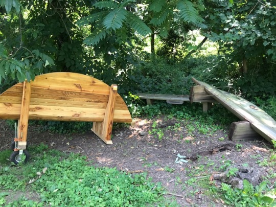 new bench alongside old bench - FDNHS - 7.1.2018